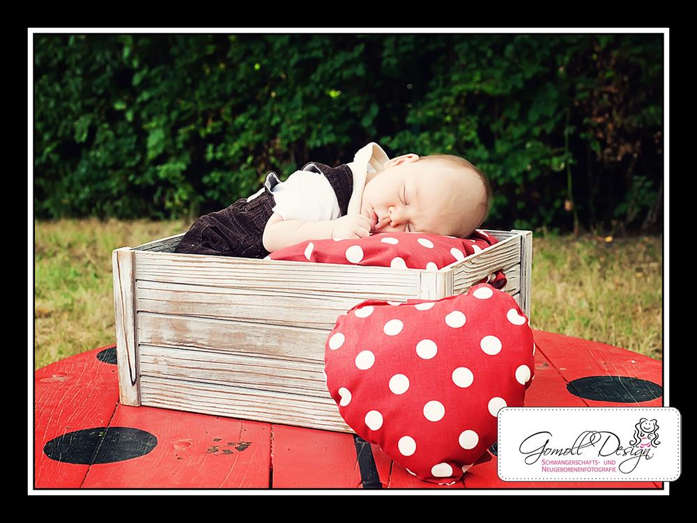 Fotograf Fotostudio Babyfotos Neugeborenenfotos Berlin Brandenburg