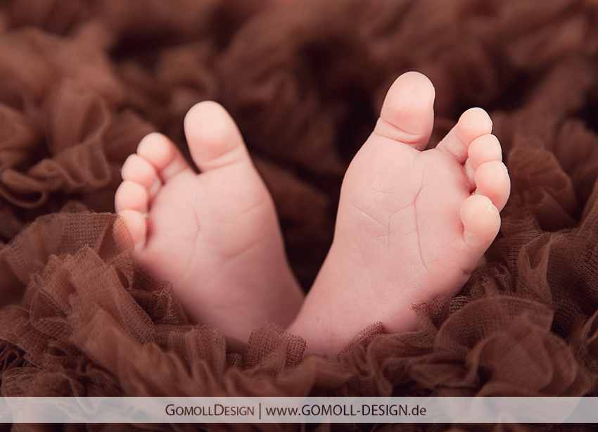 Babyfotos Fotostudio Fotograf Schönwalde Velten