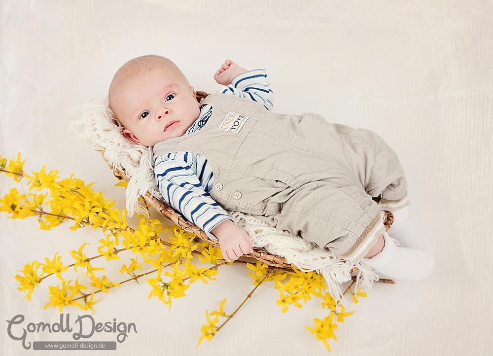 Andrea Gomoll Fotograf Babyfotos