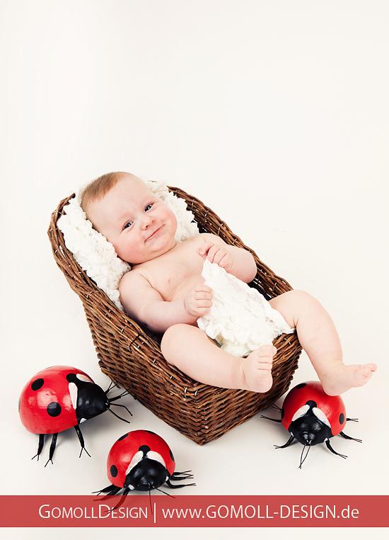 Babyfotos Fotograf Potsdam Falkensee